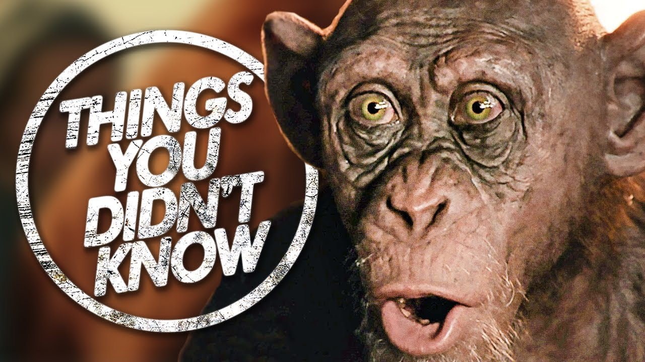 7-more-things-you-probably-didn-t-know-about-planet-of-the-apes