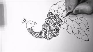 mandala peacock simple beginners