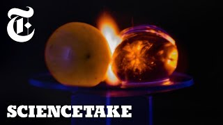 Why Microwaved Grapes Explode! | ScienceTake