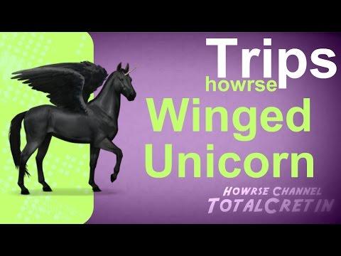 Winged Unicorn - Howrse Trips
