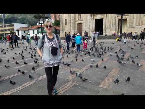 Messing with pigeons in Bolivar Square in Bogota Colombia