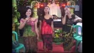 Video SAMBALADO Bersama Dangdut Campursari Kreasi Baru Zelinda 2016 download MP3, 3GP, MP4, WEBM, AVI, FLV Februari 2018