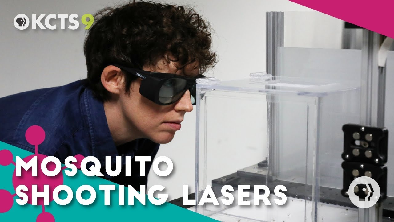 Fighting mosquitoes with frickin' laser beams
