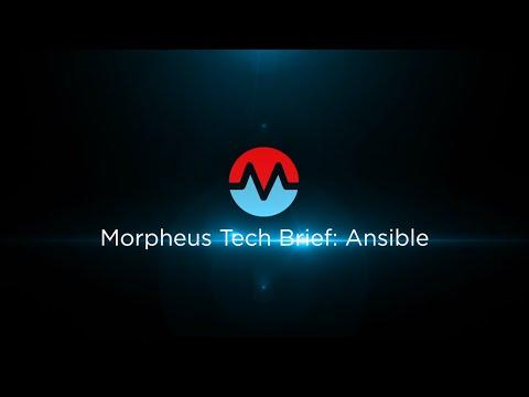 Morpheus Tech Brief: Ansible