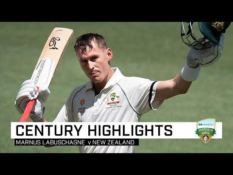 Marnus' third straight Test ton finishes on 143
