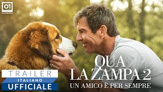 QUA LA ZAMPA 2 (2020) - Trailer Italiano HD
