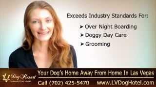 Pet Resort Las Vegas | Call (702) 425-5470 | Las Vegas Nv Pet Resort