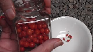 African Boxthorn Berry Jam (Bush Tucker)