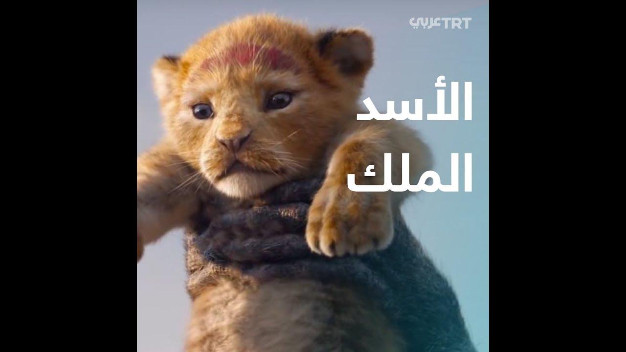 فيلم الأسد الملك