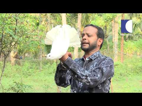 Haritham Sundharam - Episode-27 - Kaumudy Tv