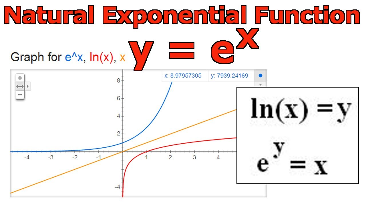 Image result for images of exponential
