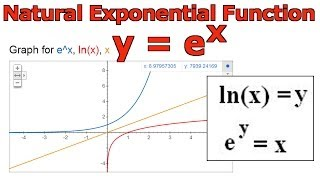 Natural Exponential Function: y = e^x