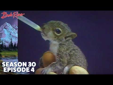 Bob Ross - Wilderness Trail (Season 30 Episode 4)