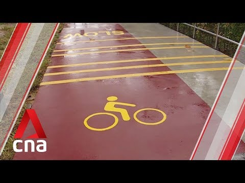 Transport Ministry to look into speeding up construction of cycling path network