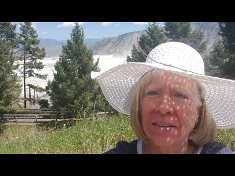 Yellowstone Park - does she see a bear?
