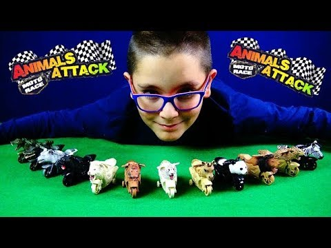 ANIMALS ATTACK MOTO RACE - GAZZAKIDS - Leo Toys