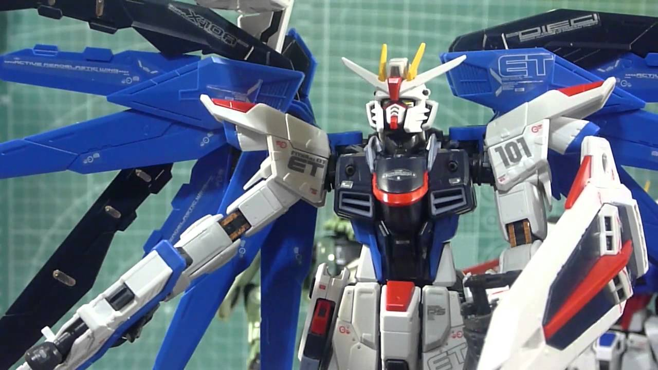 Rg freedom gundam with stickers