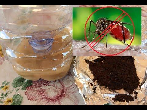 Confronto tra trappola per zanzare bucciadimela e trapp - Rimedi contro le zanzare in giardino ...