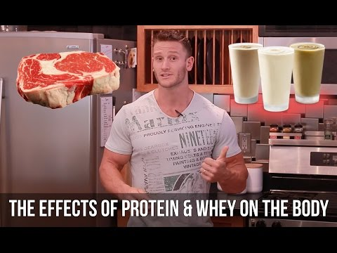 How Does Whey Protein Affect Fat Loss and Insulin- Thomas DeLauer