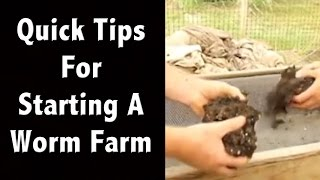 Quick Tips for Starting a Worm Farm - (Earth Worm Farming) - Off Grid Living