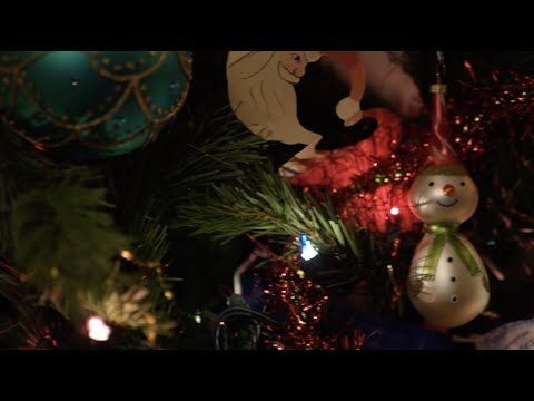 Haralson County High School Christmas 2020