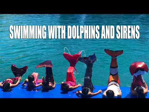 The Mermaid And Merman Club Visit Dolphin Show In Nha Trang - Tiun