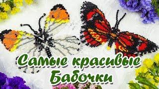 Бабочка из бисера кирпичным стежком.  Мастер класс и Схема плетения