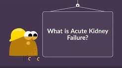 What is Acute Kidney Failure? (Symptoms, Causes, Treatment & Prevention)