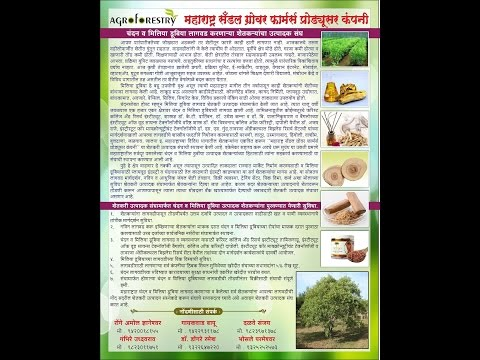 Ramesh Dongre's sandalwood farming success story