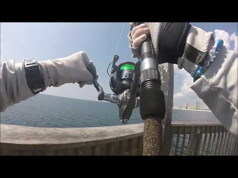 23lb King Mackerel - Gulf State Park Pier fishing