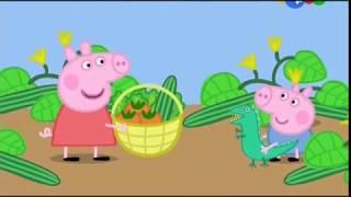 Мультики Свинка Пепа смотреть онлайн все серии подряд Мультфильмы для детей Свинка Пеппа 2017