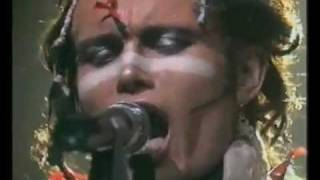 CHRISTIAN DIOR by ADAM & THE ANTS