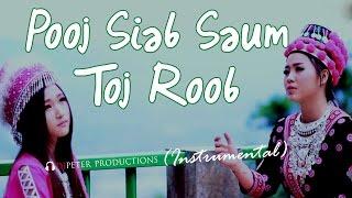 See Yaj - Poob Siab Saum Toj Roob (DJPeter Instrumental)