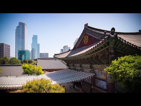 Seoul City Video Guide | Expedia