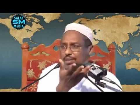 Noqo Qof Leh Hima Sare  Sheikh Mustafa