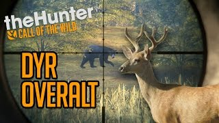 dyr overalt   thehunter call of the wild 11