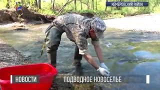 НОВОСТИ/27.05.2016/Подводное новоселье