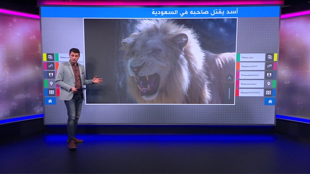 أسد يقتل صاحبه في السعودية ومطالب بمصادرة الحيوانات المفترسة من أصحابها  - نشر قبل 3 ساعة