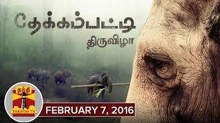 Thanthi TV Special Documetaries : Thekkampatti Thiruvizha 07-02-2016 Thanthi Tv