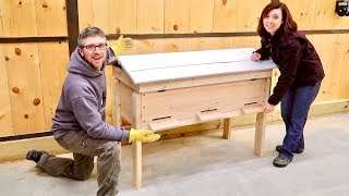 Most Unusual way We've BUILT a BEEHIVE BEFORE Getting OUR BackYard READY for 20,000 BEEs