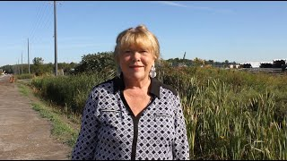 Councillor Jan Harder - September 4th Update