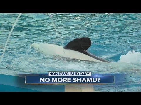 SeaWorld Fires Back Against California Lawmaker