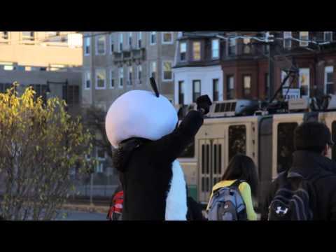 Free Panda Hugs - HKSA Fall 2012 Advertising Campaign