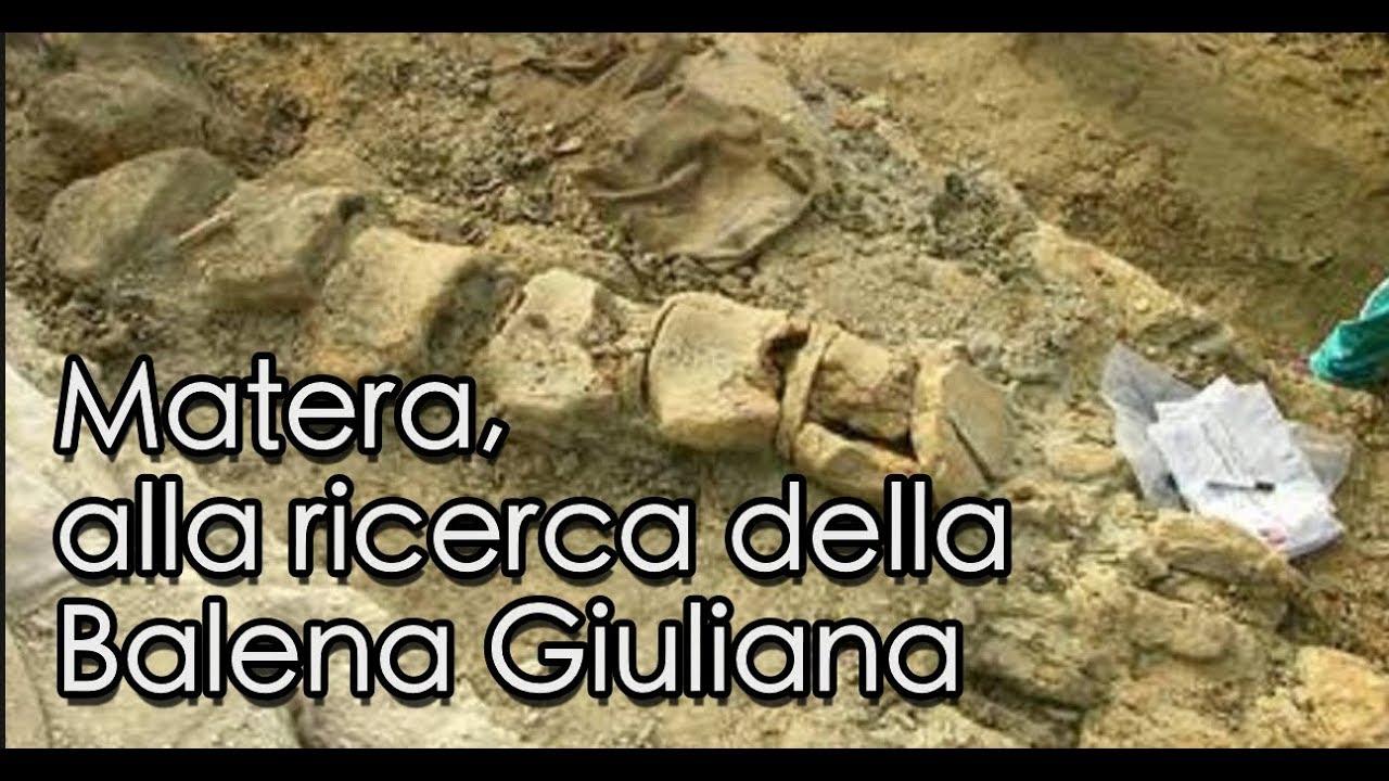 PTV Speciale: Matera, alla ricerca della Balena Giuliana