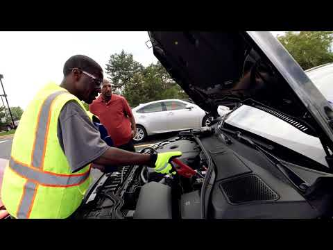 Good Hands Rescue Network: What being a rescuer is about - Craige | Allstate Insurance