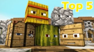 Top 5 Minecraft Hide and Seek Animations