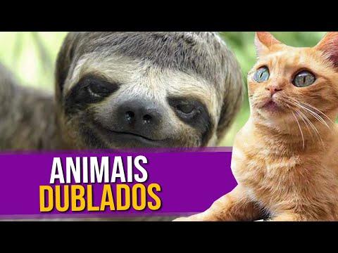 Animais Dublados Episódio 4