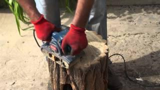 Как сделать стул из обычного пенька акации своими руками в домашних условиях