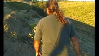 Route des Vins - Californie du nord