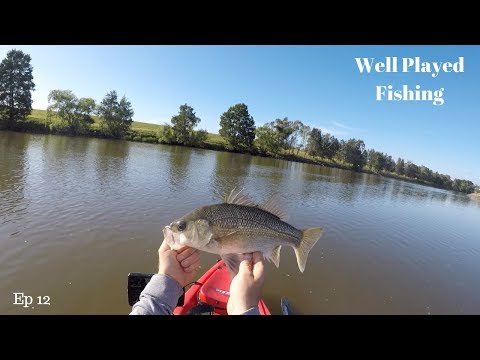 Hunter River Fishing In Morpeth Using Homemade Marz Lures